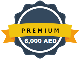Dynamic Website Designing Abu Dhabi UAE Premium