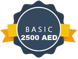Dynamic Website Designing Abu Dhabi UAE