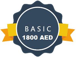 Ecommerce Basic Website Designing Abu Dhabi UAE