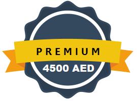 Ecommerce Website Designing Abu Dhabi UAE Premium